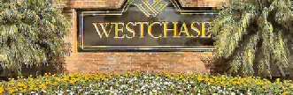 search westchase homes for sale